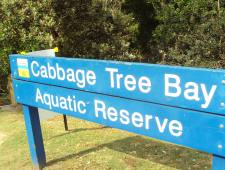 Cabbage Tree Bay Aquatic Reserve (Manly Australia) on a lovely November spring day
